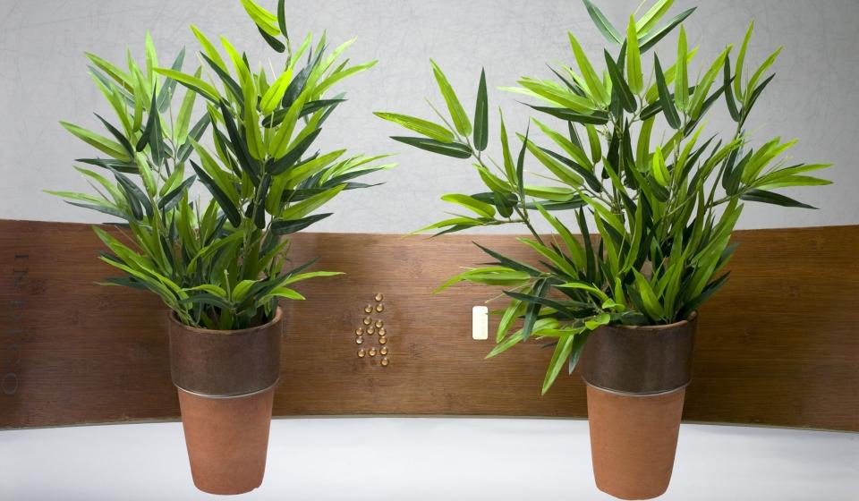 31 LM-Bambu-D_small